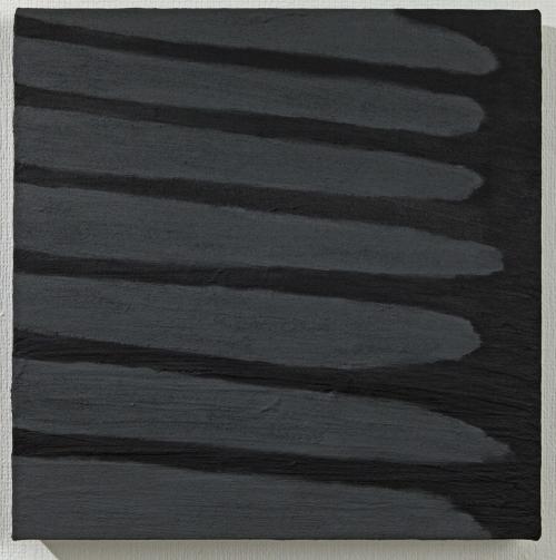 Flag-fence-girigiri-201003-a5